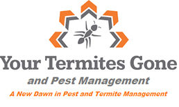 Your Termites Gone